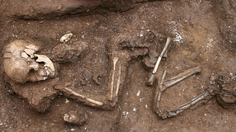 Skeletal remains unearthed near Galle Face