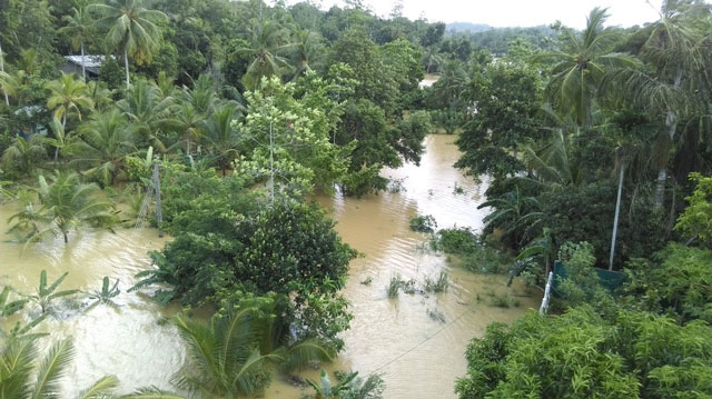 169 dead, 112 missing over 400,000 affected by floods
