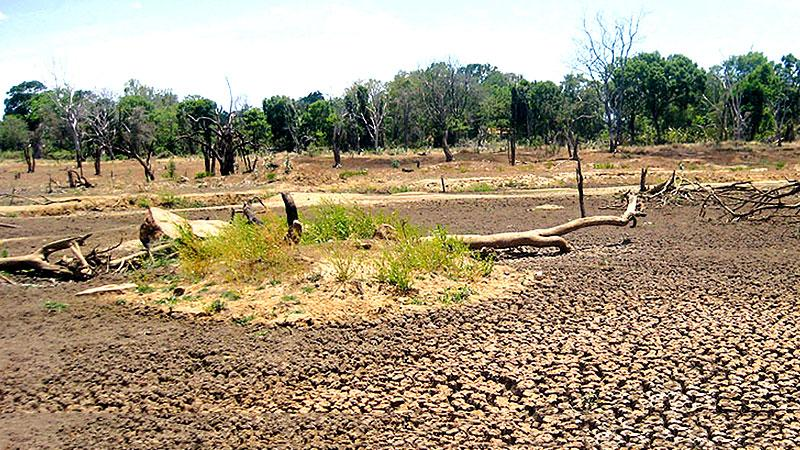 Severe drought in Jaffna
