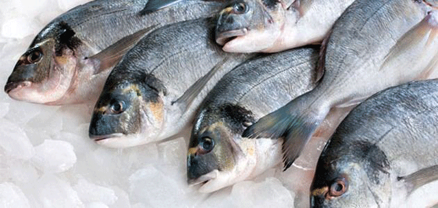 Levy on wet fish reduced by Rs. 25
