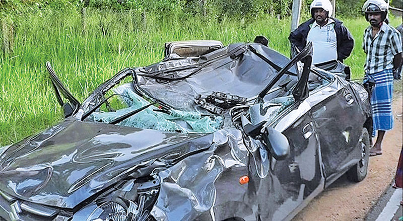 close SHAVE FOR MOTHER, DAUGHTER AS ELEPHANT FALLS ON CAR