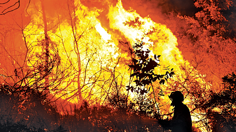 A firefighter works to put out one of the several forest fires in central Portugal on Sunday.