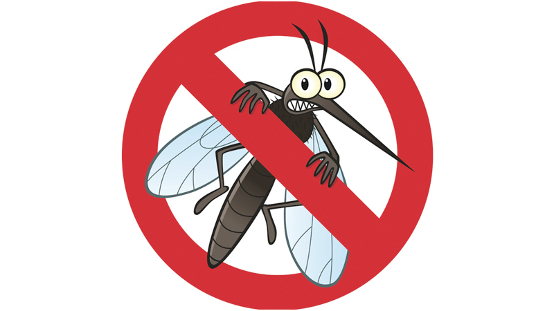 Competent authority to manage dengue