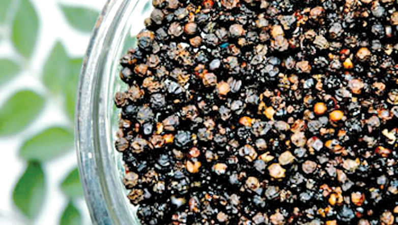 Govt. to buy pepper from farmers within two weeks