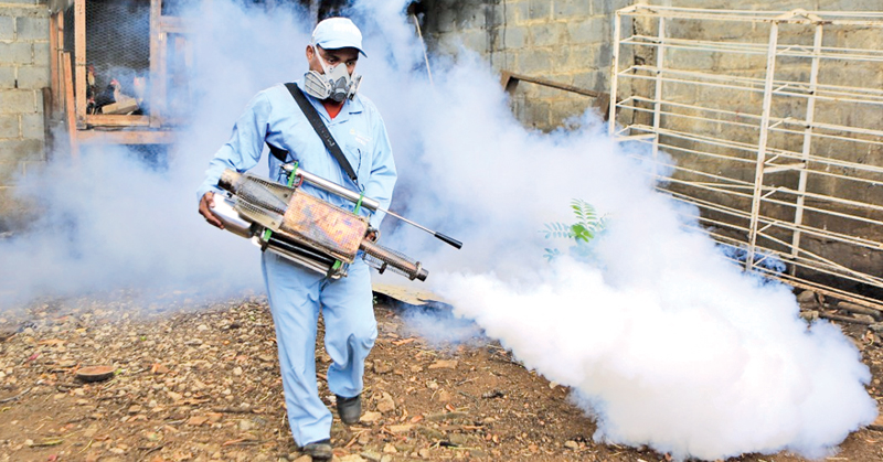 Second phase of dengue eradication programme today