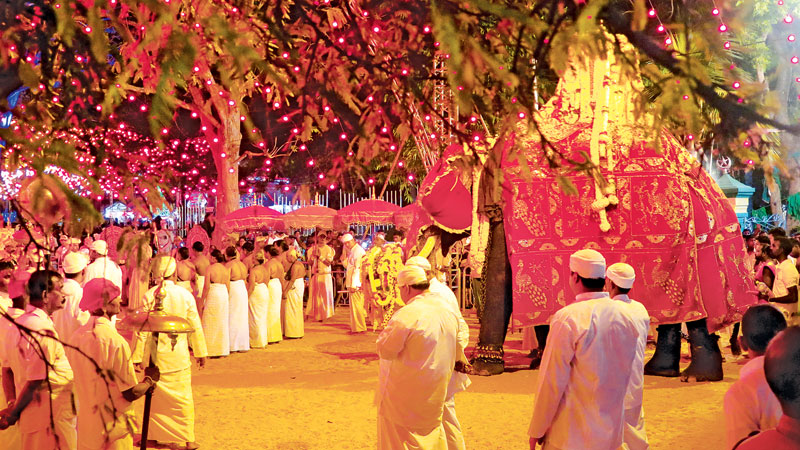 After the main ritual the big tusker covered in garlands of flowers makes his way back through the  temple  grounds