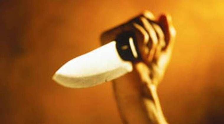 Seventeen-year-old girl stabbed to death by boyfriend