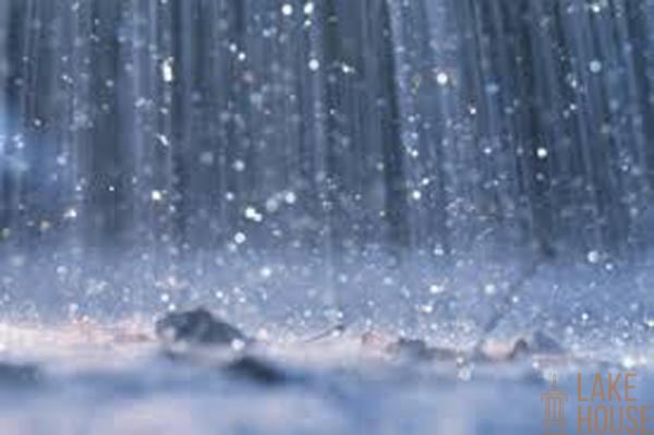 Light showers expected today