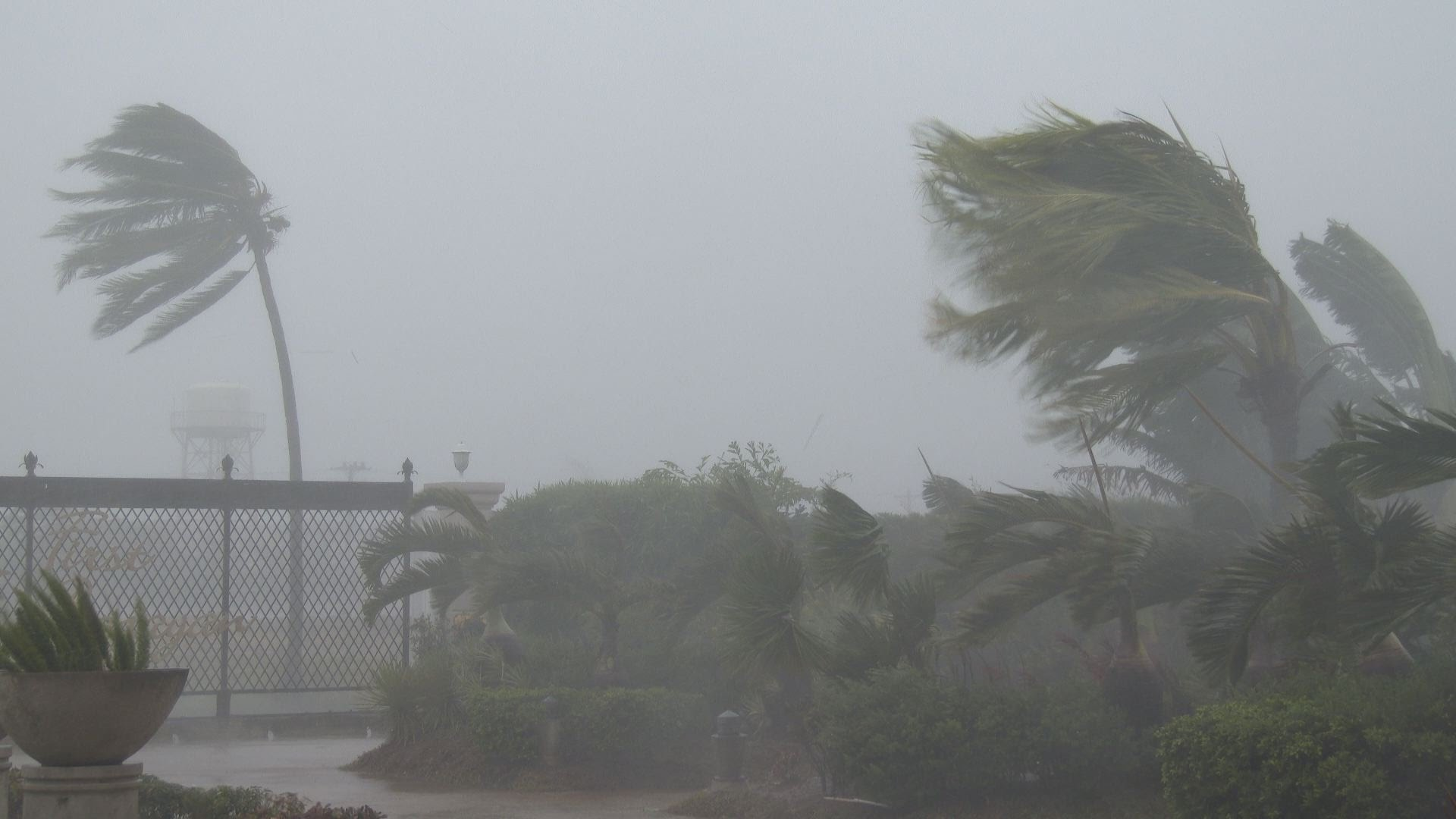 Rain, strong winds expected today