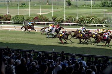 A horse race at a racecourse in Bangkok.