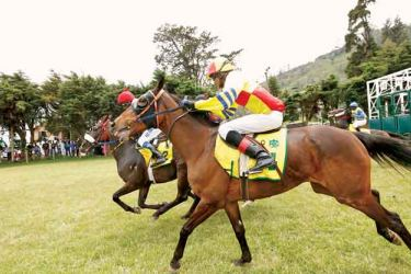 Horse racing pictures.