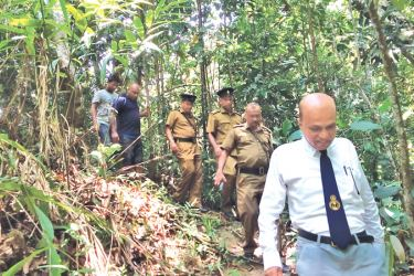 Excise officers conducting the raid inside the Hiyare reserve