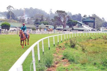 The Nuwara Eliya Race Course comes alive with 'The RTC Magic Million race day