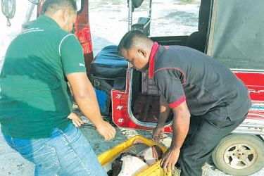 Parts of dugong seized by the Navy while being transported in a three wheeler to be sold