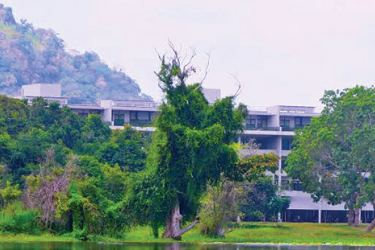 Jetwing Lake experience the wild side of Dambulla