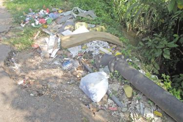 Picture Garbage: Caption: A garbage dump near the Eheliyagoda town. Picture by Nimal wijayatunga.