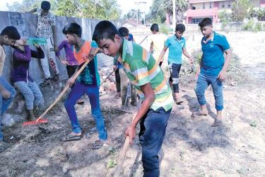 A dengue eradication campaign was organised by the students of Al-Mina Vidyalaya, Nintavur recently. They cleaned the Masjithul Ravaha Cemetery along with their teachers. Picture by A.B. Abdul Gafoor, Ampara District Group Corr.