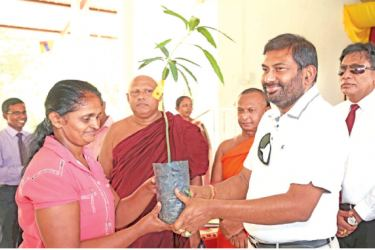 The Primary Industries Minister, Daya Gamage is seen handing over a Tom EJC mango plant at Damana in the Ampara District.