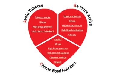 It is not the blood sugar alone that causes heart attacks.