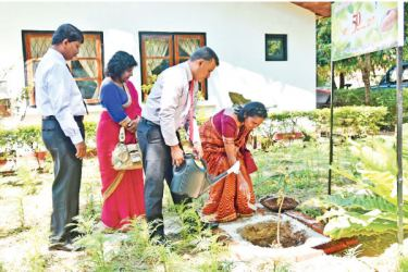 Director General P.L.U. Ratnamalala watering a tender plant that was planted to commemorate the Golden Jubilee celebrations