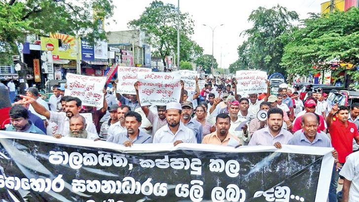 Hundreds of farmers of the All Island Agrarian Workers Association held a protest blocking the A-9 Road seeking a certified price for paddy and the restoration of the fertiliser subsidy. They said that they would launch a continuous satyagraha until their demands are met. Picture by Kanchana Ariyadasa, Dambulla Corr.