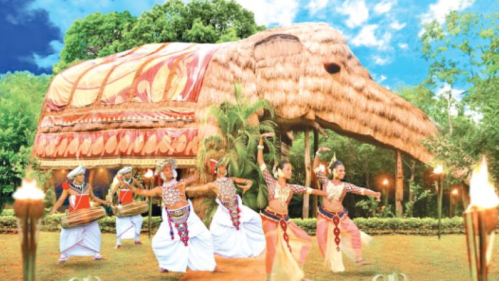 The Elephant Villa is the reason KumbukRiver is famous around the world.