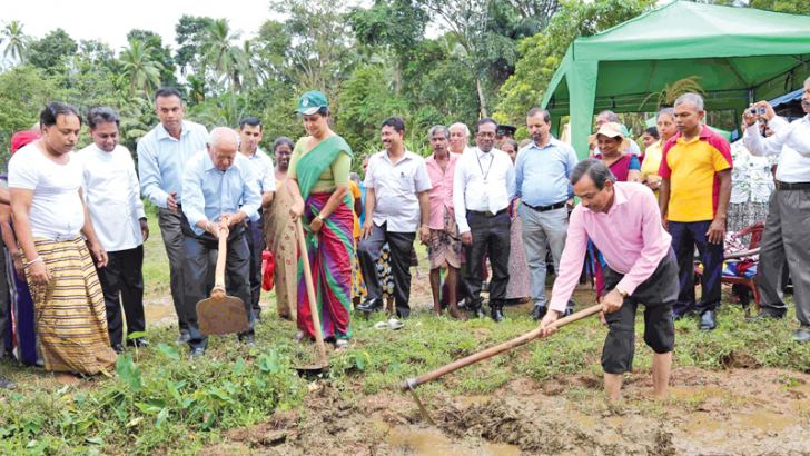 Aswaddumization programme initiated under the patronage of Sabaragamuwa Governor Marshal Perera at the Morawatte paddy fields at Ruwanwella