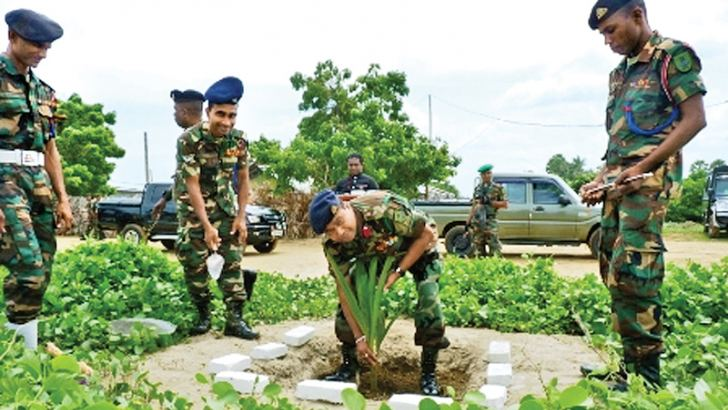 The tree-planting campaign in progress.