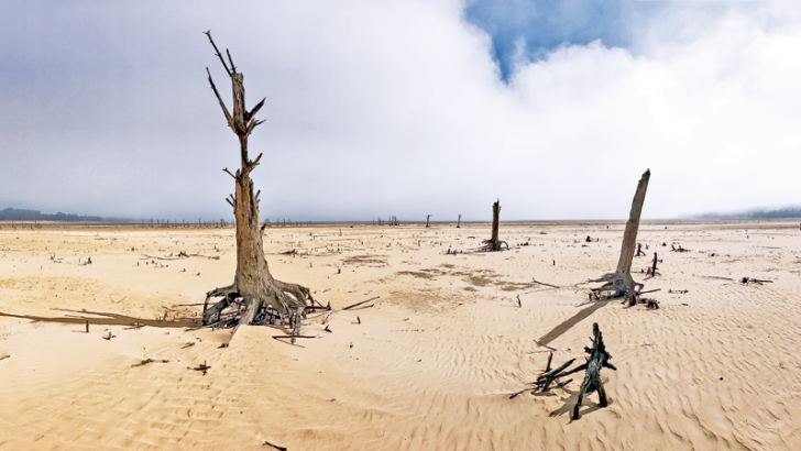 The Theewaterskloof Dam, a key source of water for Cape Town, South Africa, has completely dried out.